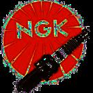 NGK Vonkprop BP5ES